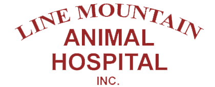 Line Mountain Animal Hospital, Inc.